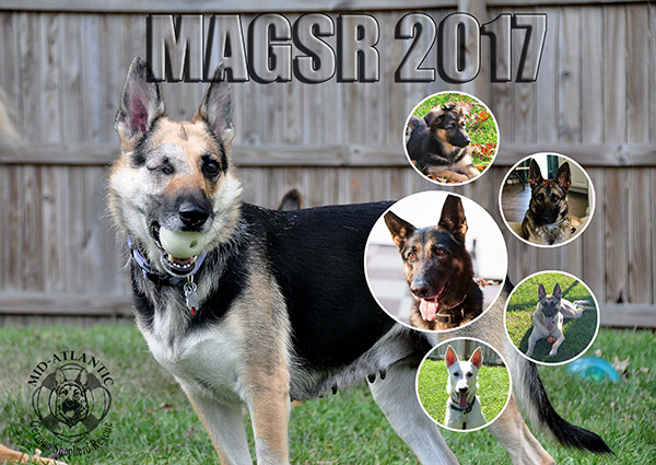 Order your 2017 MAGSR Calendars today!