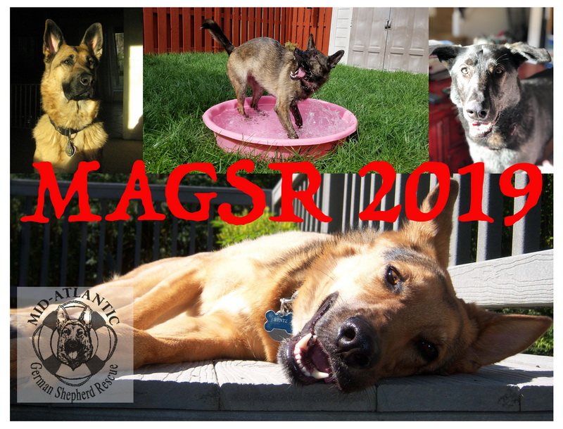 Get your 2018 MAGSR Calendar today!