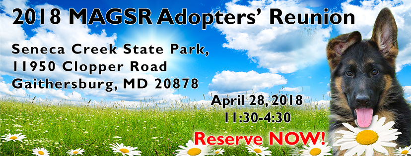 Join us at the 2018 MAGSR Adopters Reunion