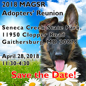 Join MAGSR at the 2018 Adopters Reunion!