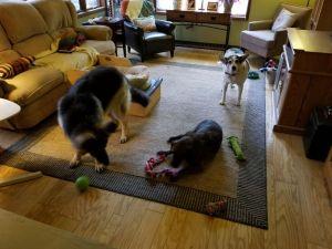 Titan, Floyd & Karly