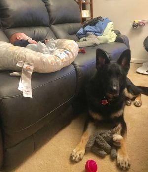 Stark babysitting his little brother
