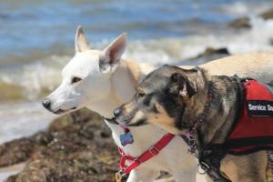 Best friends since MAGSR, enjoying summer vacation at the beach