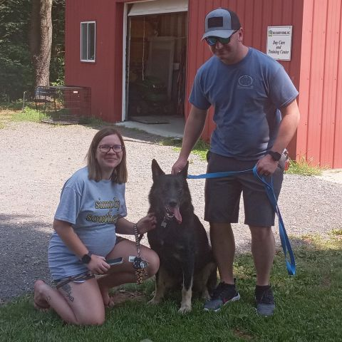 Bandit is going home!