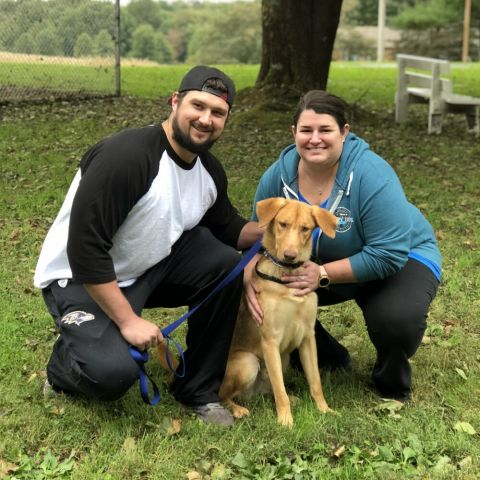 Cane adopted