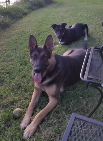 Lukie & Riley