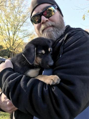 Wisco adopt